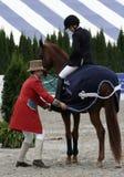 Exposition classique de cheval de Hampton photos libres de droits