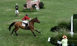 Exposition classique de cheval de Hampton photographie stock libre de droits