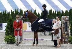Exposition classique de cheval de Hampton photo stock