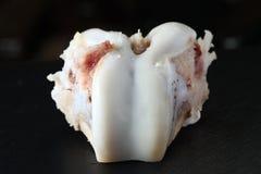 Exposition d'os de jambe de porc le joint de cartilage Photos stock
