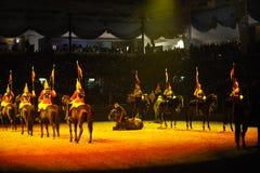 Exposition de cheval photographie stock