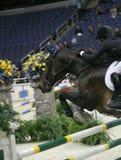Exposition de cheval dans le C.C Image libre de droits