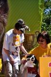 Exposition de chien Photographie stock libre de droits
