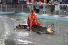 Exposition de crocodile Photo stock