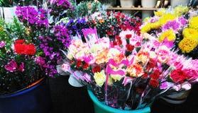 Exposition de fleurs dans le baril Images libres de droits