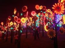 Exposition de lumière de nuit Images stock