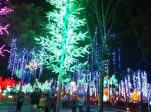 Exposition de lumière de nuit Images libres de droits