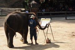 Exposition de peinture d'éléphant au camp d'éléphant de Maesa Photo stock