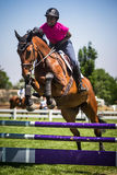 Exposition de Rider Jumps Horse At Horse Photo stock