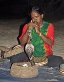 Exposition de serpent au Sri Lanka Photos libres de droits