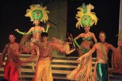 Exposition de variété de carnaval Photos libres de droits
