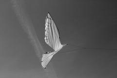 Exposition des cerfs-volants Image libre de droits