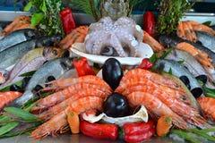 Exposition-fenêtre des fruits de mer Photos libres de droits