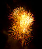 Exposition/Guy Fawkes Night de feux d'artifice Photographie stock