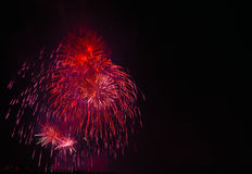 Exposition/Guy Fawkes Night de feux d'artifice Image stock