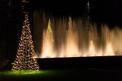 Exposition légère multicolore avec la fontaine d'eau dans le jardin Images stock