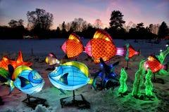 Exposition l?g?re des lanternes chinoises dans un jardin botanique photographie stock libre de droits