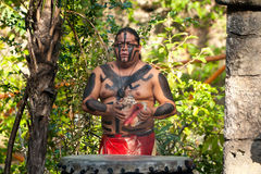 Exposition maya dans la jungle Image stock