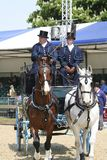 Exposition royale de cheval de Windsor Photo libre de droits