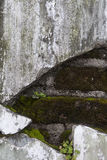 Expossedbakstenen achter Concrete Muur Stock Foto