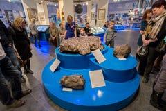 Exposure meteorite in Urania museum of Moscow Planetarium, Russia Stock Images