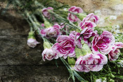 Exposure of pink flowers,wood texture background Stock Images