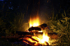 Exposure to combustion of the fire at 6 seconds. Burning campfire at night in nature. The fire appears to have exposures of 6 seconds Royalty Free Stock Photos
