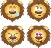 Expresiones del león Imagen de archivo