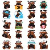 Expressão do Emoticon de Emoji do cão do buldogue Foto de Stock