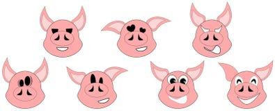 Expressões agradáveis do porco Fotografia de Stock Royalty Free