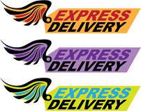 Express delivery sign with a wing Vector Stock Photo