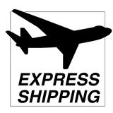Express shipping symbol. Vector illustration of shipping badge Royalty Free Stock Photography