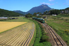 Express train of Japan. Green express train that runs in the background Yufu of Kyushu, Japan Stock Images