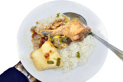 EXPRESS VEGETABLE SAUCE. Rice with chicken vegetable sauce which is very practical in the evenings of great fatigue, allowing to eat vegetables without spending stock images