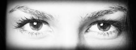 Expressieve ogen Stock Foto