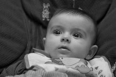 Expression de visage d'un bébé de quatre mois Images libres de droits