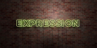 EXPRESSION - fluorescent Neon tube Sign on brickwork - Front view - 3D rendered royalty free stock picture Royalty Free Stock Photos