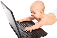 Expression little baby with laptop. Stock Image