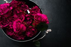 Love romance red roses bouquet flowers feelings. Expression of love and romance. Beautiful bouquet of red roses in a box on dark background. Burgundy flowers to royalty free stock photos