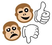 Expression monkey Royalty Free Stock Image