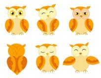 Expressions de hiboux Images stock