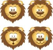 Expressions de lion Photos stock