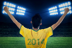 Expressive brazilian fans at stadion Stock Photography