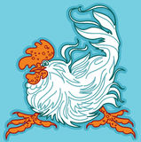Expressive Cockerel on Turquoise Background. Stock Photos