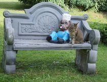 The pretty cat sits next to the figure of an English bulldog on the garden bench royalty free stock images