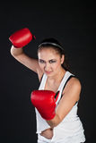 Expressive girl boxer Stock Photos