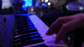 Expressive Musicians playing keyboard. stock video footage