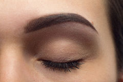 Expressive significant eye perfect shape of eyebrow Royalty Free Stock Photos