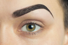 Expressive significant eye perfect shape of eyebrow Royalty Free Stock Images