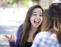 Expressive Young Mixed Race Female Sitting and Talking with Girl Stock Photo